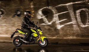 GROM > Your Naked Bike, Your Street Bike